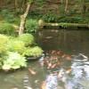 絶対行くべき!大阪朝潮橋の温泉銭湯・テルメ龍宮の良さや魅力とは?