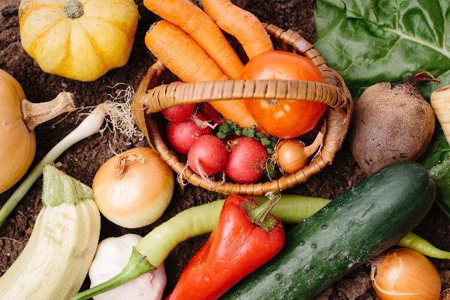 ウラマヨ 急成長の野菜通販オイシックスの裏側や特徴とは?