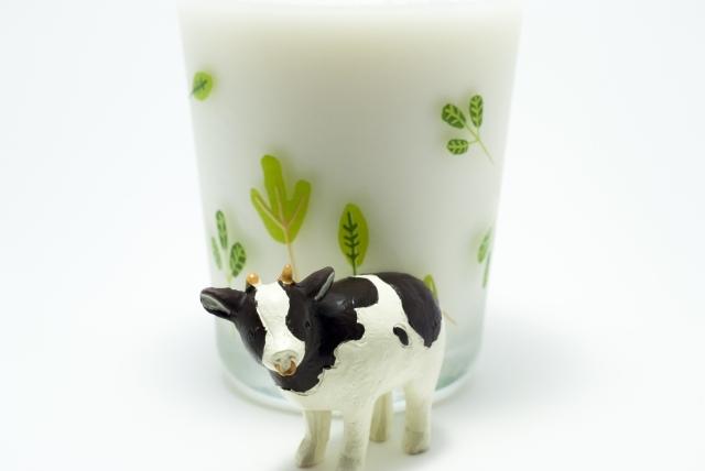 マツコの知らない世界に出演したミルク研究家の小山浩子さんの紹介する牛乳が珍しいって?